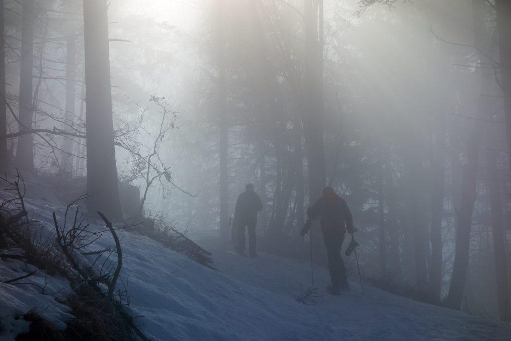Wir kommen in den Nebel. Die Sonne ist noch nicht direkt sichtbar.