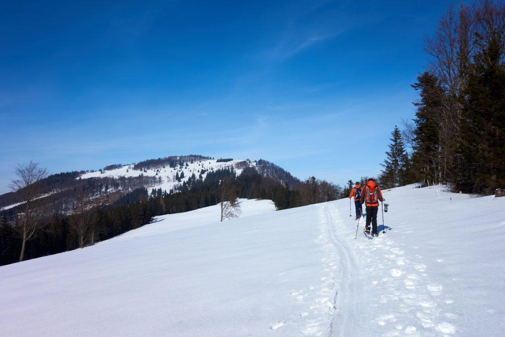 Am Weg vom Rotenstein zur Traisnerhütte auf der Hinteralm.