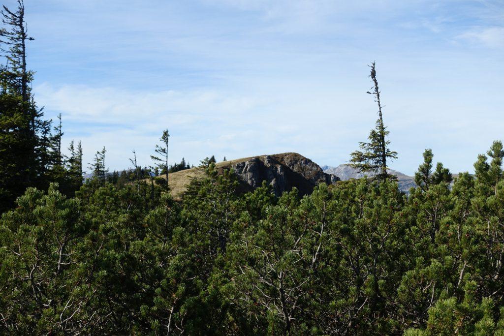 Gipfel des Turntaler Kogel. Foto: Martin Heppner