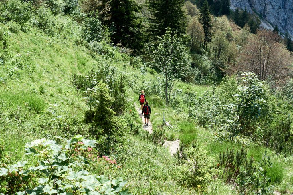 Abstieg ins Kaisertal (Foto: Martin Heppner)