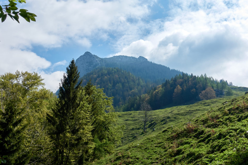 Blick Richtung Vorderkaiserfeldenhütte (Foto: Martin Heppner)