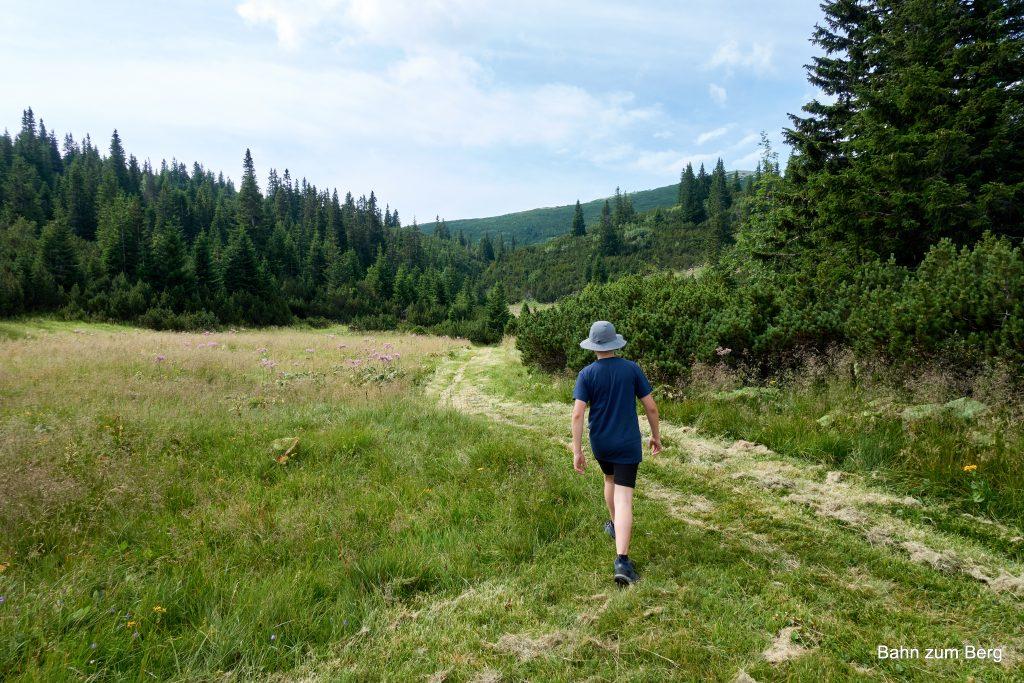 Einbiegen auf den Weg zwischen Weißkogel und Jakobskogel. Foto: Martin Heppner