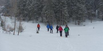 Schneeschuhwanderung zum Grünen See