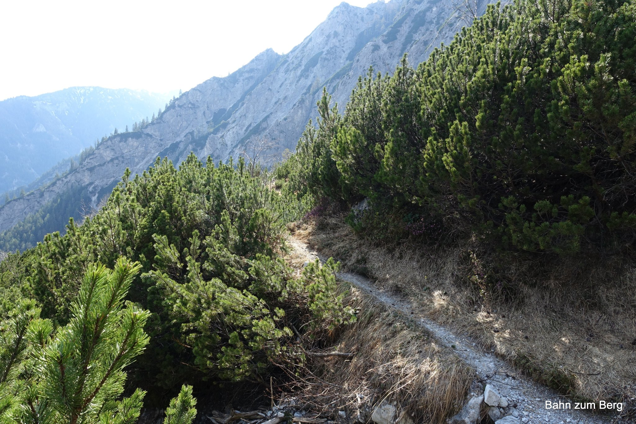 Nach der Kletterstelle macht es Sinn auf dem Weg zu bleiben