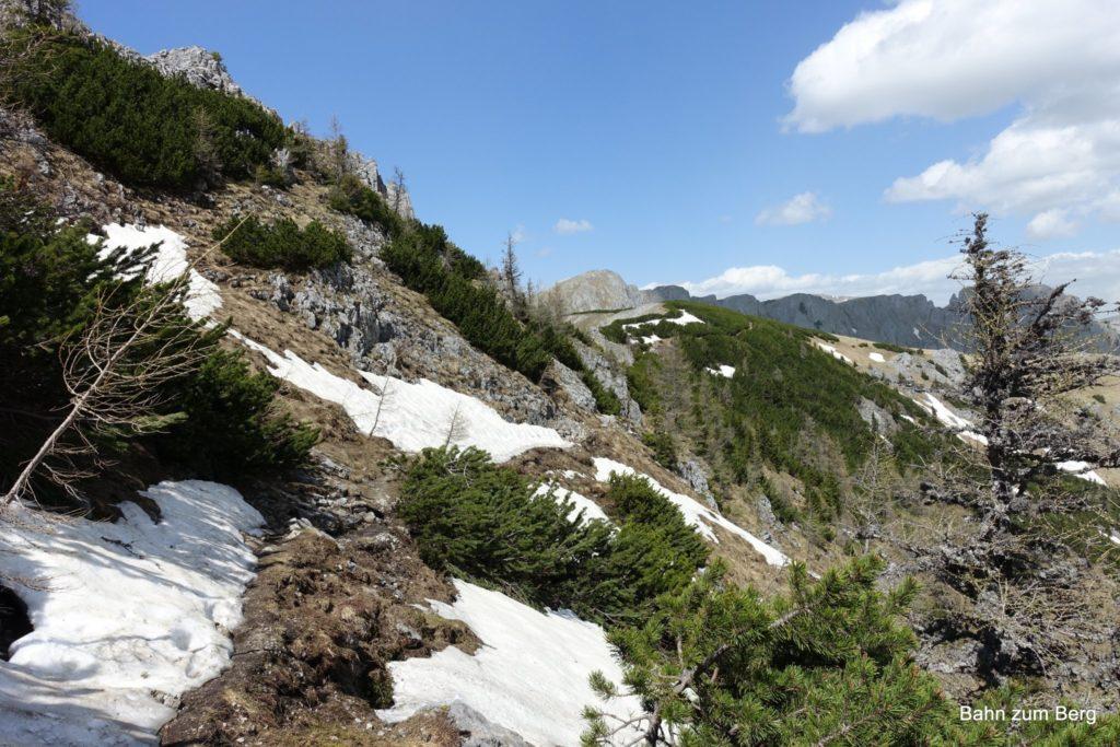 Der Weg über die Mitteralm ist weitgehend flach, nur kurze Strecken verlaufen unterhalb des Kamms.