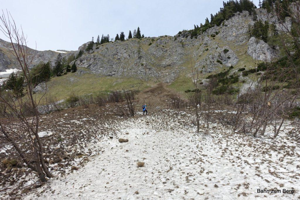 Statt den unteren Teil über den Gamssteig zu gehen, sind wir über die Schneefelder abgefahren.