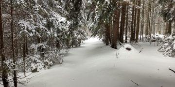 Winterspaziergang über den Gahns