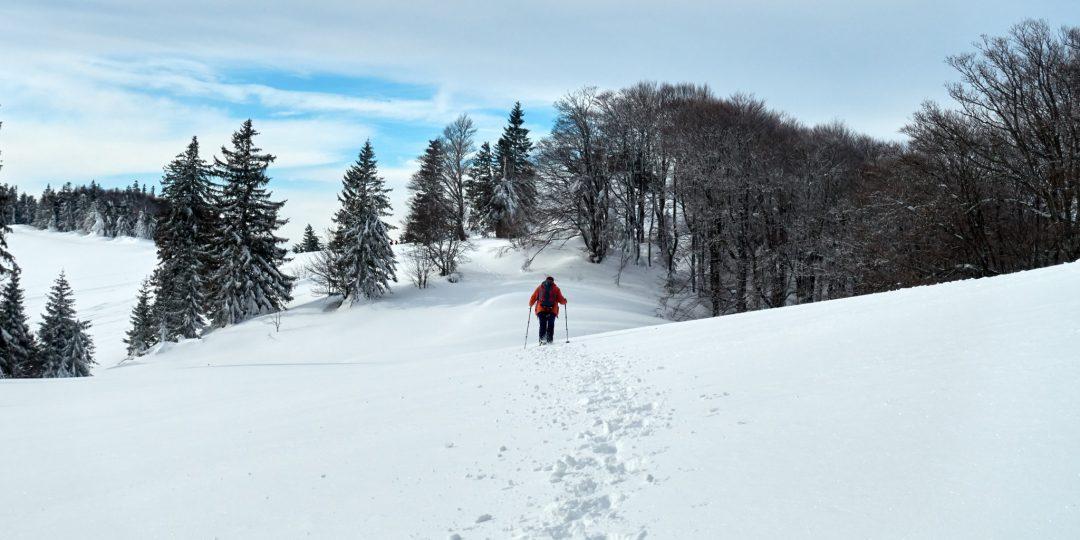 Kurz vor der Hütte, bzw. dem Gipfel des Eisensteins. So sieht Schneeschuhwandern aus!