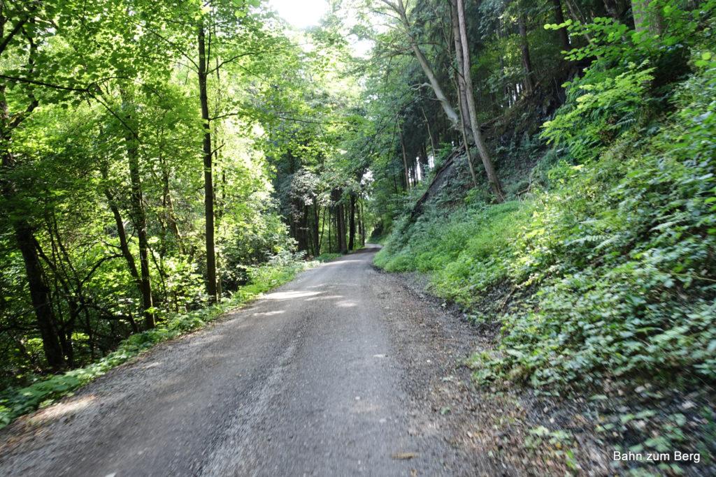 Mountainbikestrecke (Demarstraße) auf den Hochanger