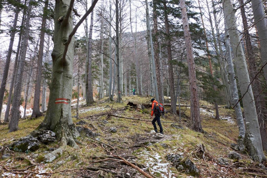 Ist der Anstieg durch den Wald zu Beginn nur steil, aber schneefrei...