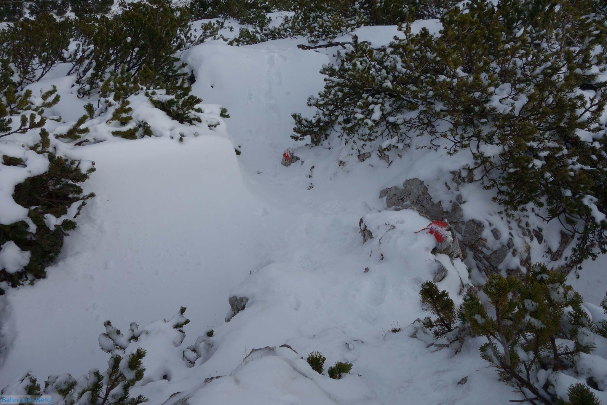 Im Abstieg ist der erste, steilere Teil von der Leobner Mauer hinunter unangenehmer, als im Aufstieg.