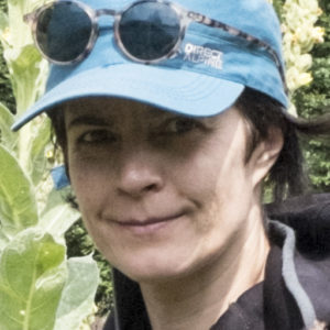 Birgit Reiter