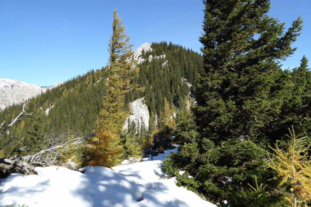 Es liegt schon etwas Schnee am Vorgipfel. Das Gipfelkreuz ist ab hier immer in Sicht.