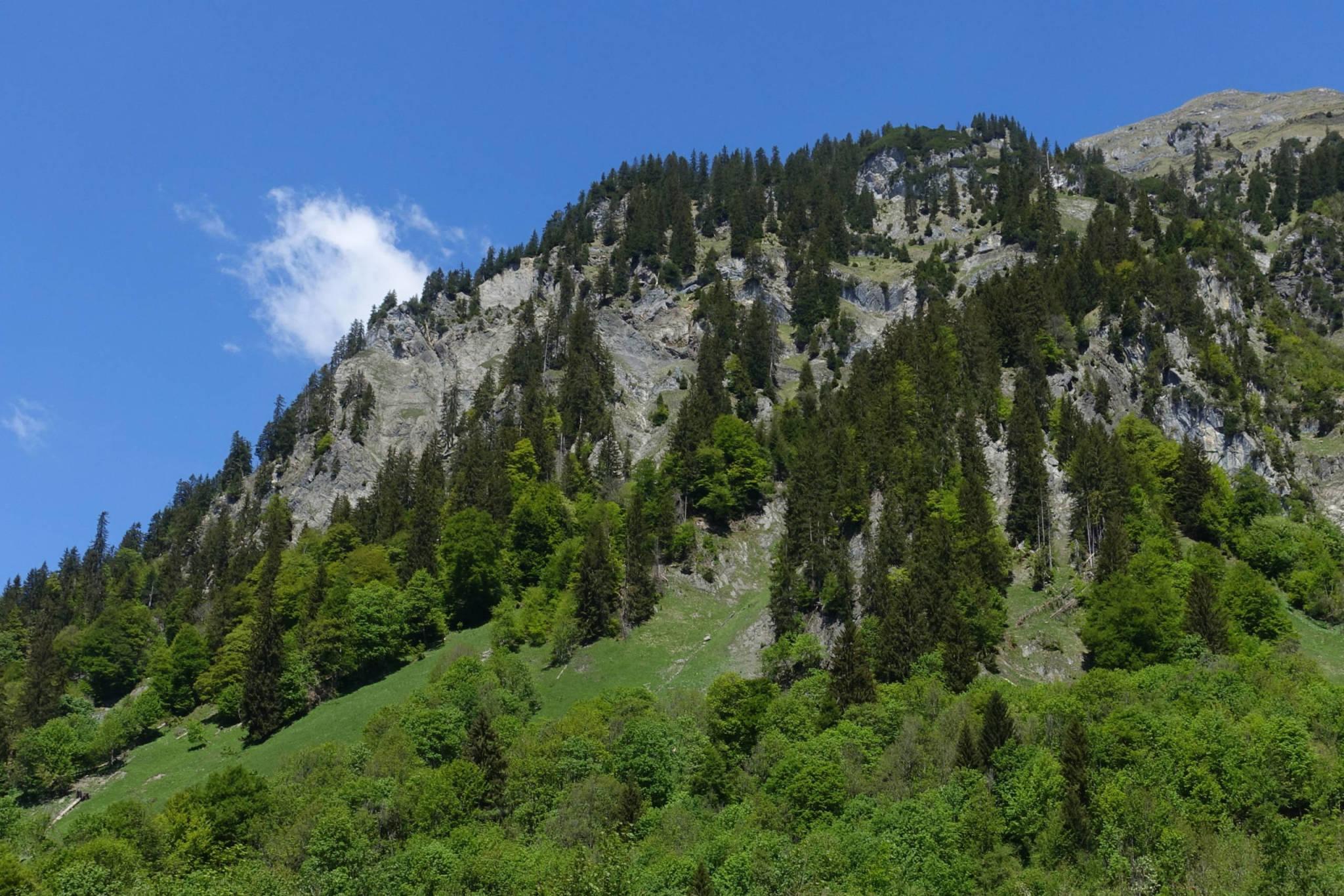 Blick zum Schnauzlberg, rechts oben die Blisadona (Foto: Peter Backé)