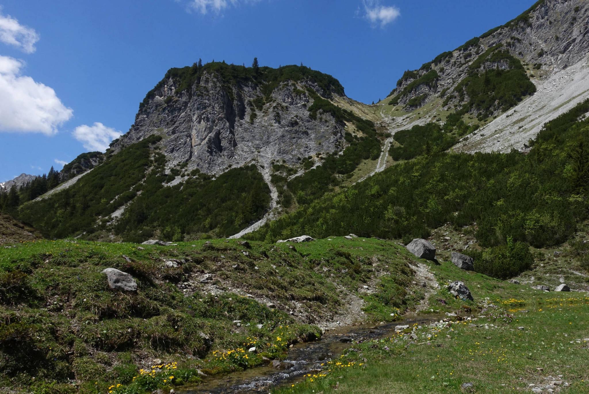 Im Bereich der Abzweigung Richtung Blisadona (Foto: Peter Backé)