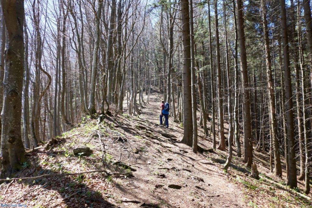 Am Bergrücken entlang zum Sonnkogel hinüber. Foto: Martin Heppner