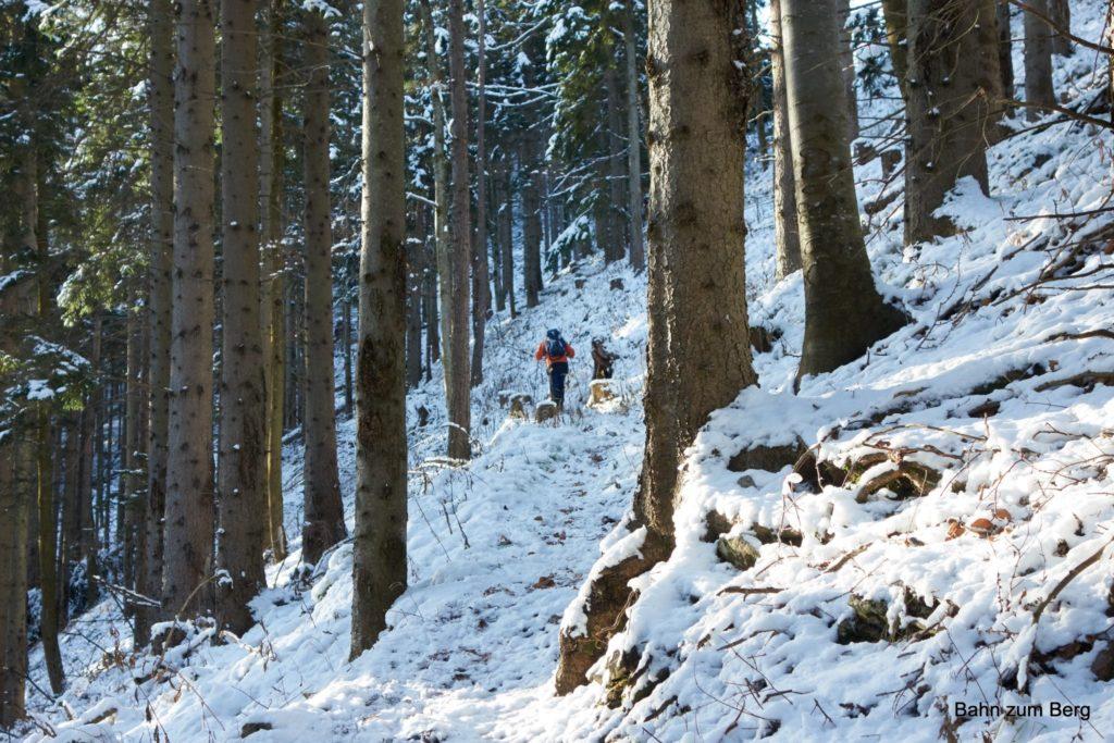 Aufstieg von Hinternaßwald