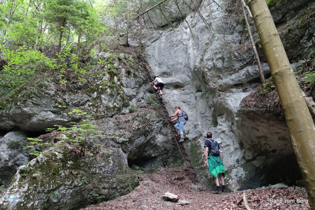 Leiter am Waldeggersteig in der Großen Klause