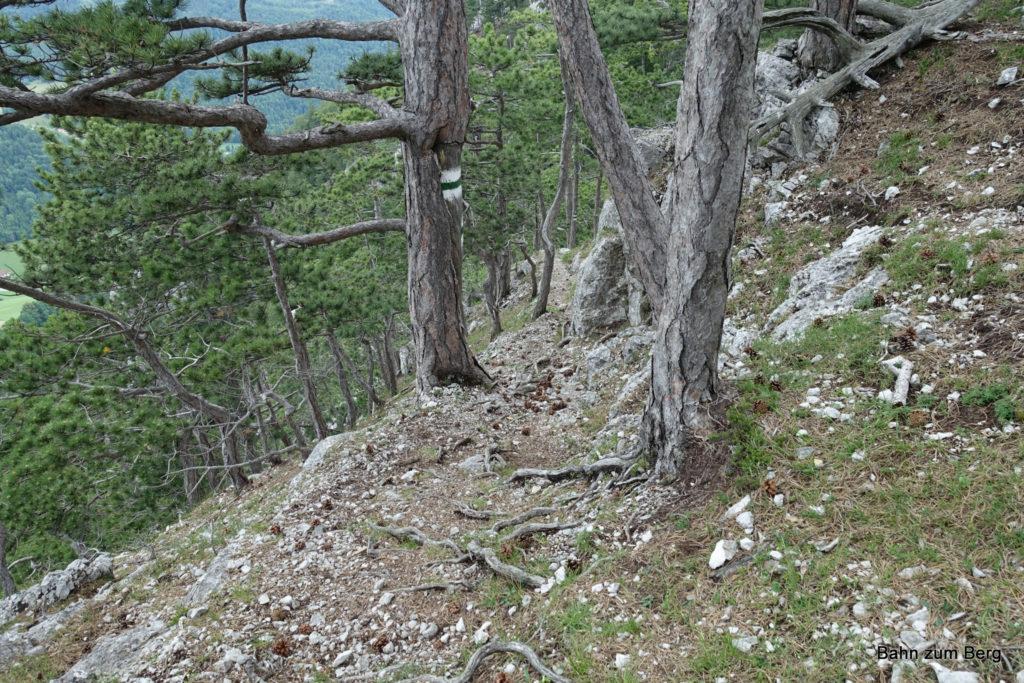 Abstieg über die Krumme Ries