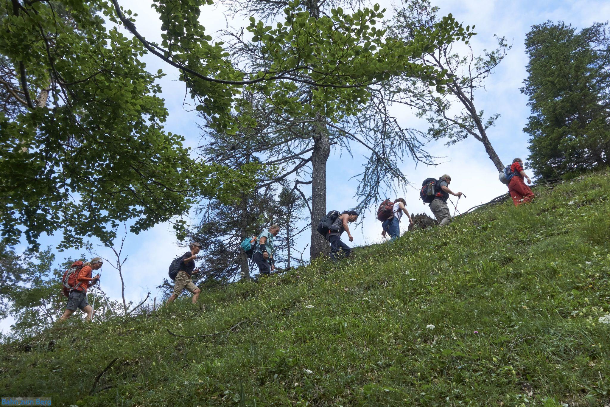 Im Karlgraben geht es moderat steigend im Wald bergauf.