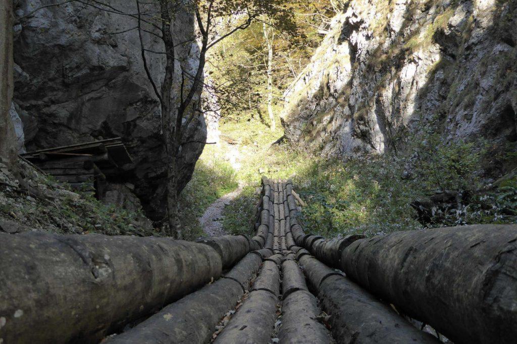 Blick vom unteren Ende der rekonstruierten, ehemals 7km (!) langen Holzriese.