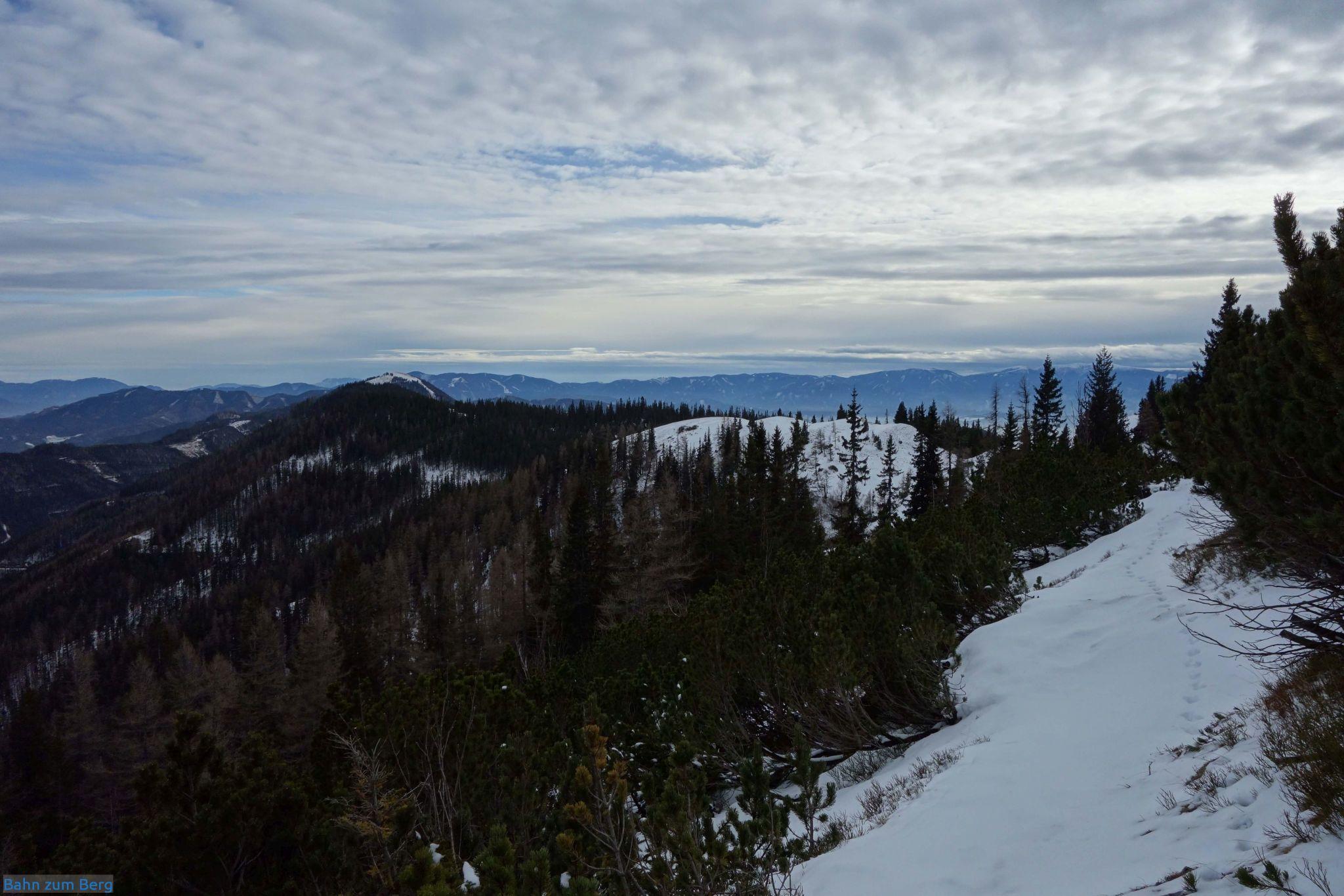 Rechts die schön ausgeschnittene Latschengasse. Der Weg folgt dem Kamm im weiten Bogen nach links. Die einzigen Spuren im Schnee sind von einem Fuchs, mindestens einem Hasen und einer Gemse.