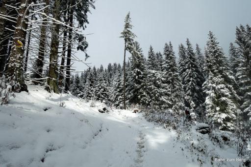 Es wird mit der Höhe immer winterlicher. Foto: Martin Heppner
