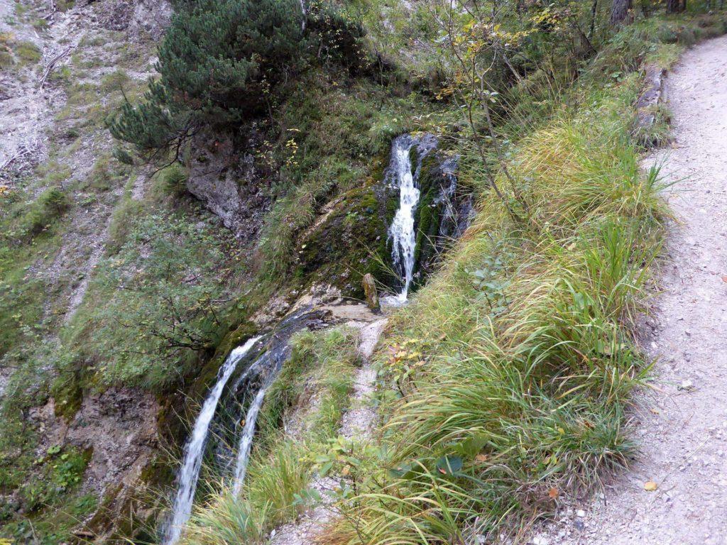 Der Weg folgt dem Mühlbach bergab zum Ötscherhias.