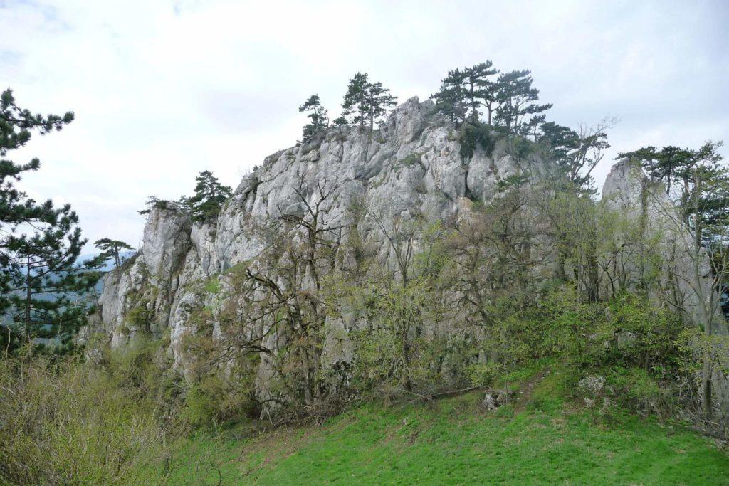 In der Rinne rechts kann man schön auf den Hausstein hoch klettern. Foto: Julian Kleinknecht