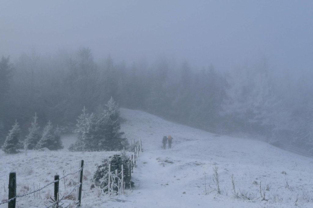 Der Fadensteig beginnt am Waldrand hinter der Edelweißhütte.