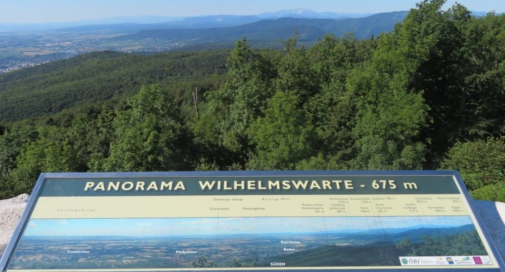 Ausblick von der Wilhelmswarte. Foto: Pedro Labut