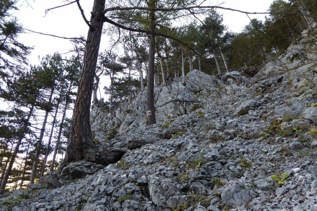 Serpentinen mit Seilsicherung über das Geröllfeld.