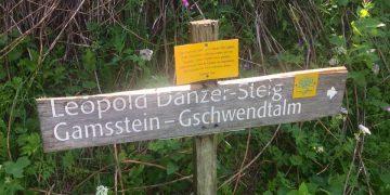 Gamsstein und Gschwendtalm