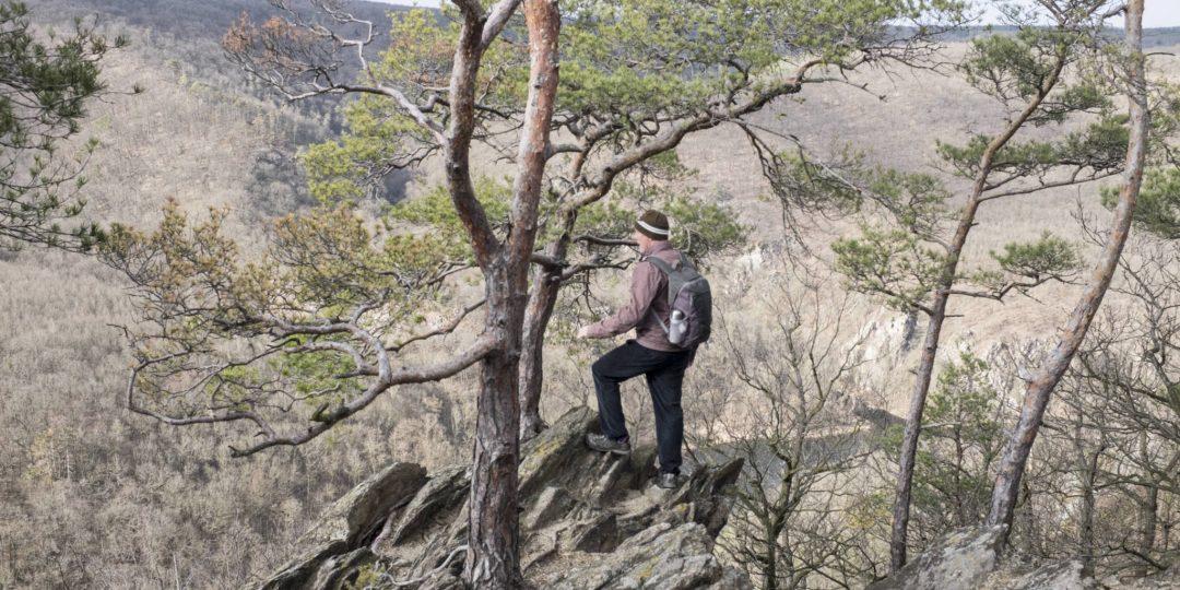 Aussichtspunkt Sealsfieldův Kámen