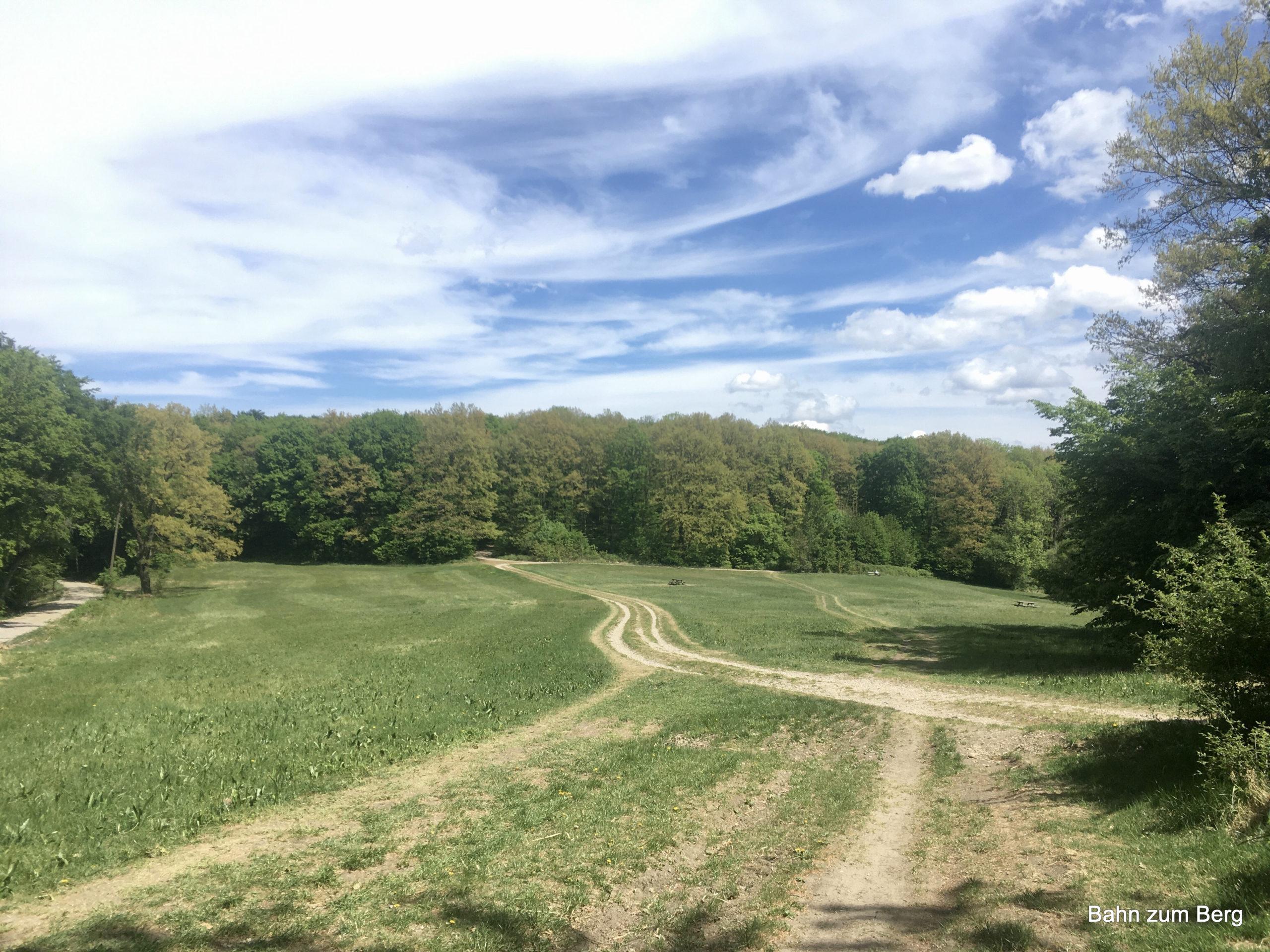 Naturpark Eichenhain. Foto: Veronika Schöll