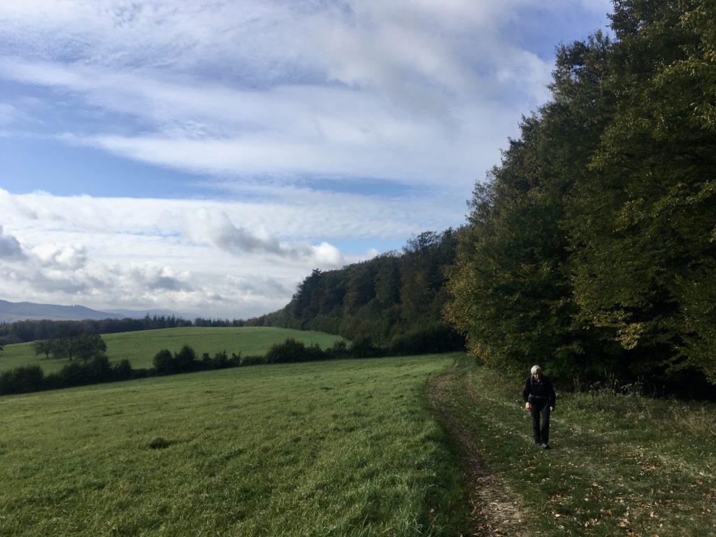 Wiesenweg Richtung Troppberg Foto Veronika Schöll