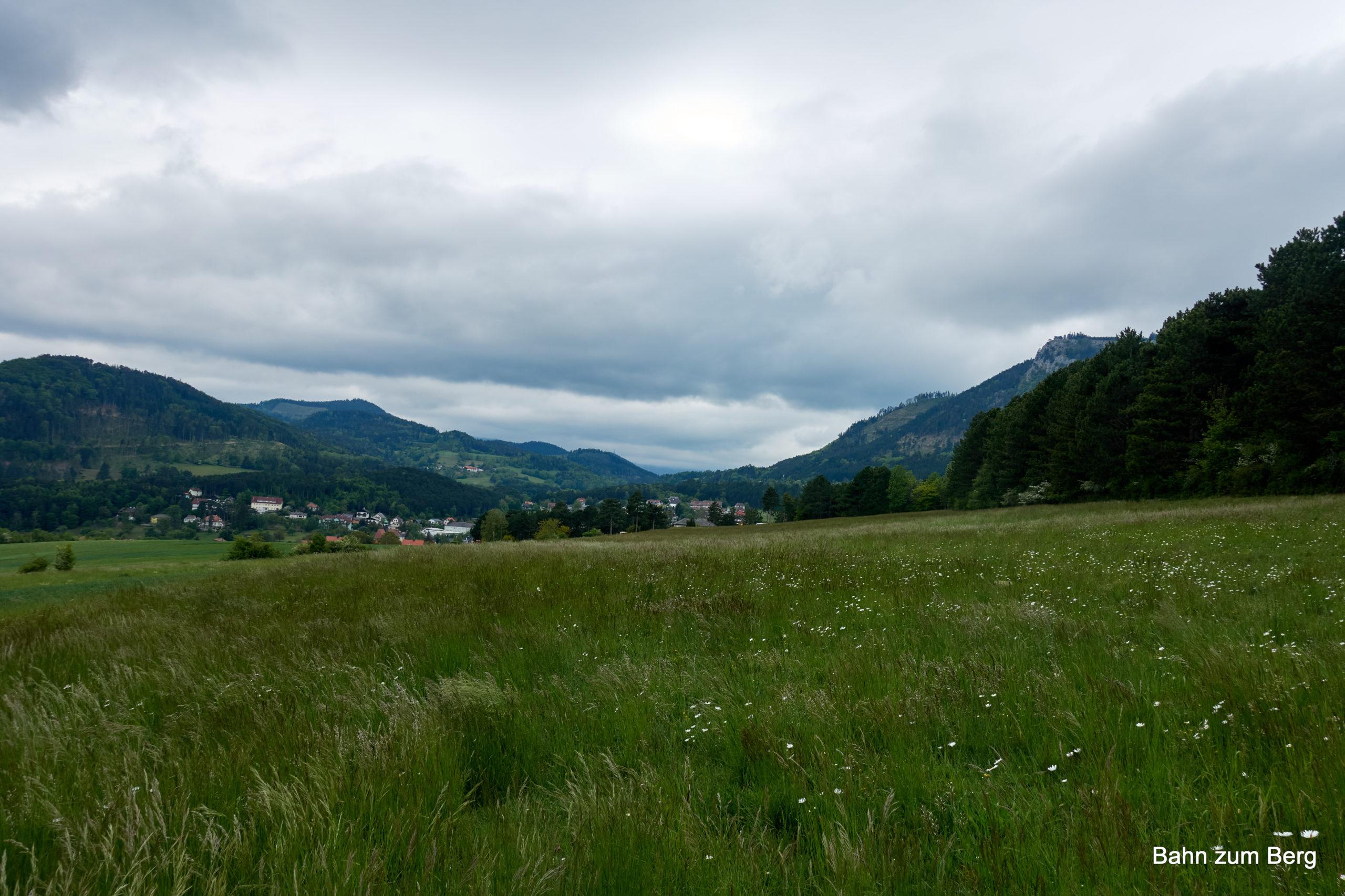 Blick Richtung Schneeberg (wolkenumhüllt). Foto: Martin Heppner