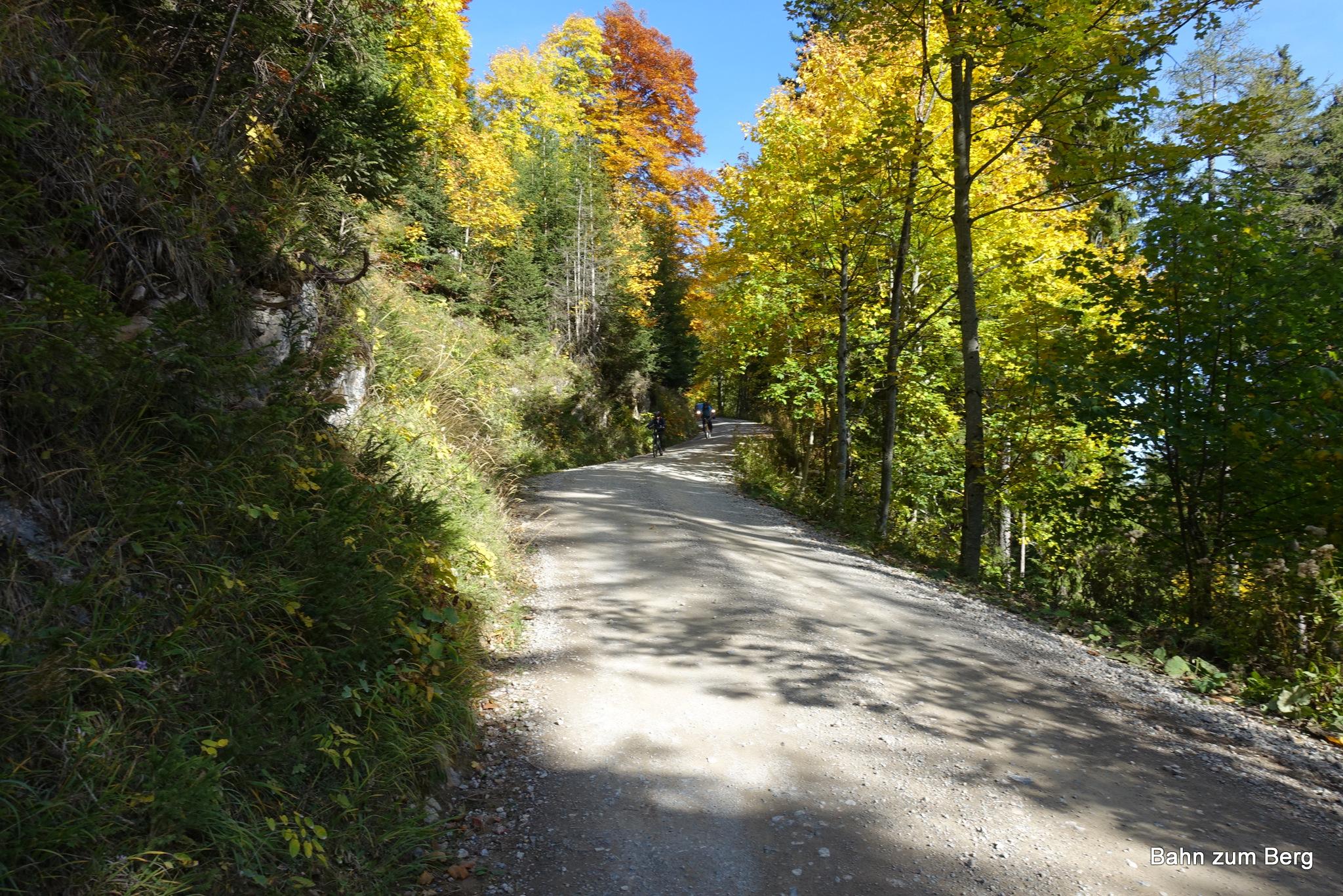 Herbstliche Abfahrt auf der Fahrstraße