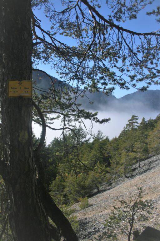Hinweisschild entlang des Wegs. Foto: Birgit Frank