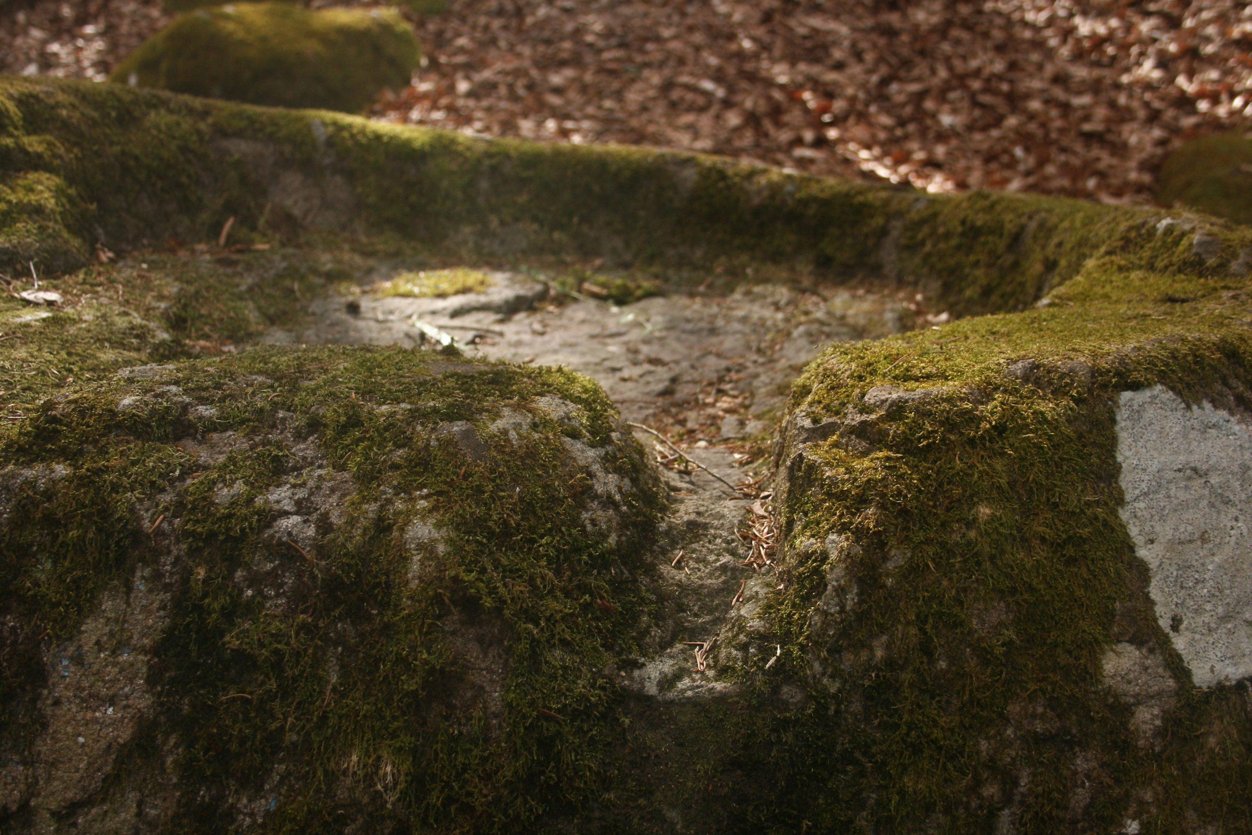 Opferstein. Foto: Birgit Frank