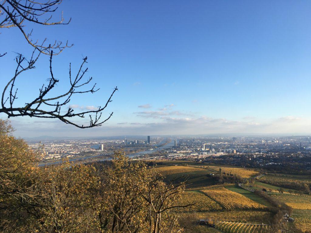 Wienblick vom Kahlenberg. Foto: Veronika Schöll