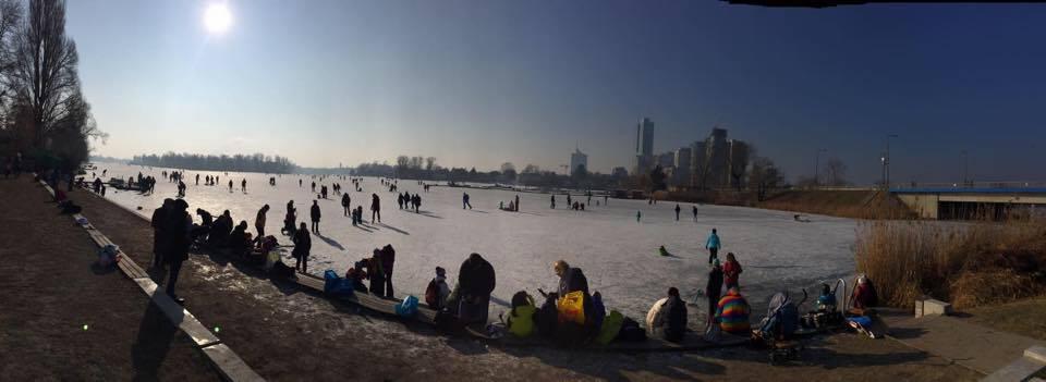 Zugefrorene Untere Alte Donau. Foto: Petra Jens