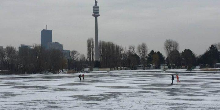 Alte Donau 2. Foto: Petra Jens