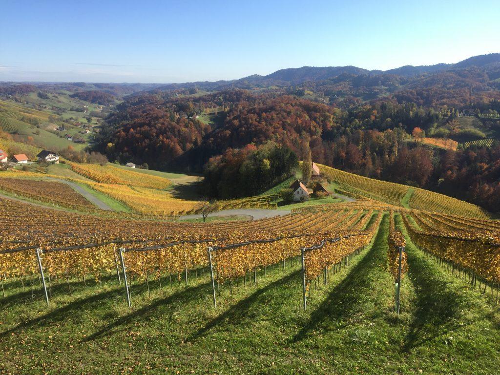 Südsteiermark im Herbst - eine Bilderbuchlandschaft. Foto: Petra Jens