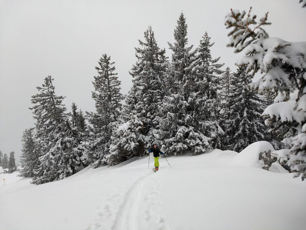 Im Gipfelbereich. Foto: Nikolaus Vogl