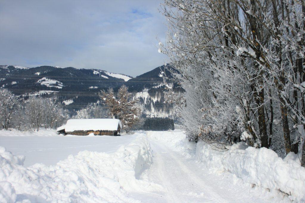 Panoramaloipe. Foto: Birgit Frank
