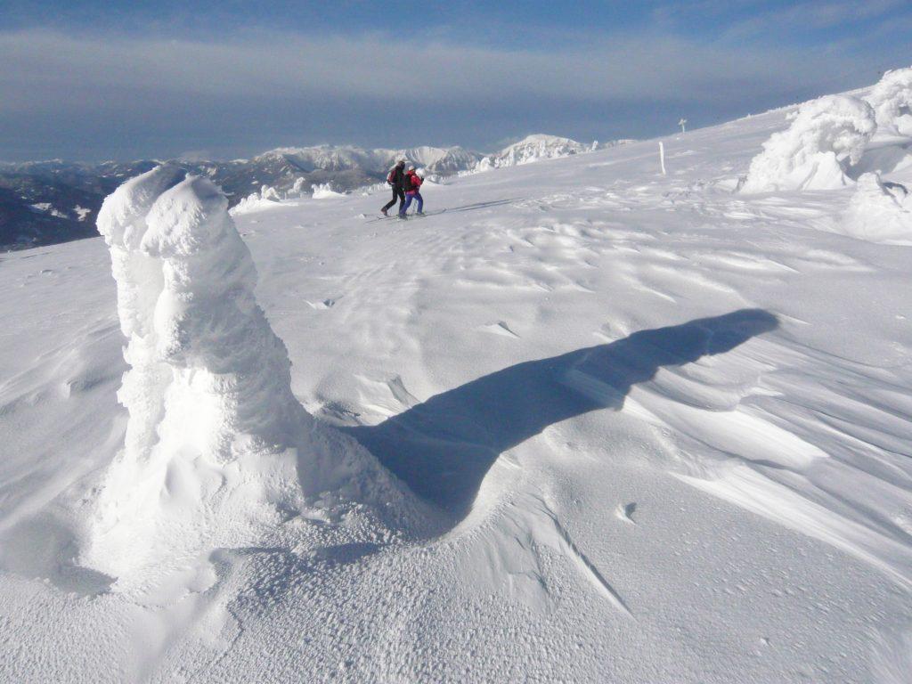 Im Gipfelbereich. Foto: Alpenverein Edelweiss