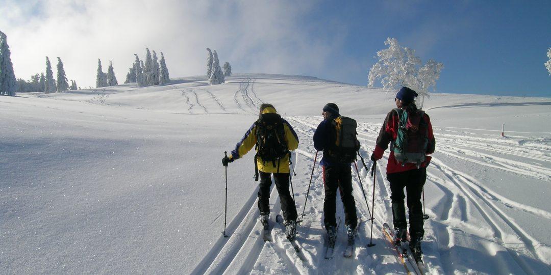 Unterwegs auf der Hochfläche. Foto: Alpenverein Edelweiss