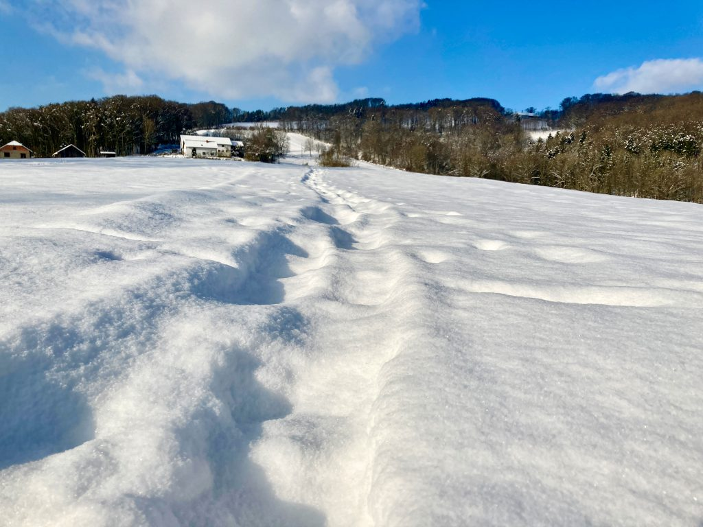 Schneeschuhwandern hinterlässt Eindrücke. Foto: Stefan Hochhold