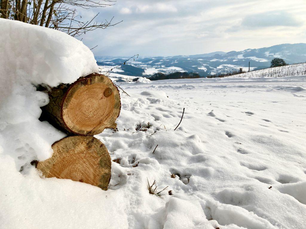 Es duftet nach Holz. Foto: Stefan Hochhold